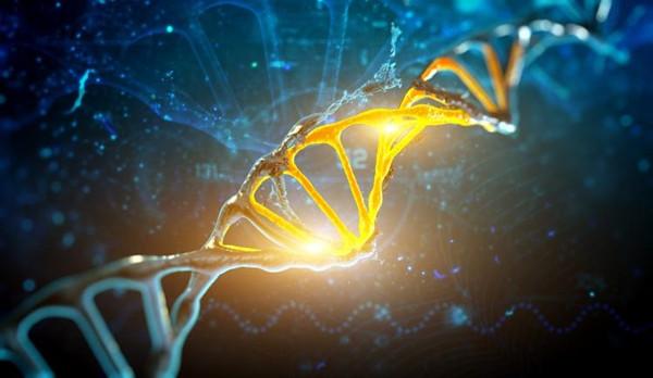【命运】遗传与改命